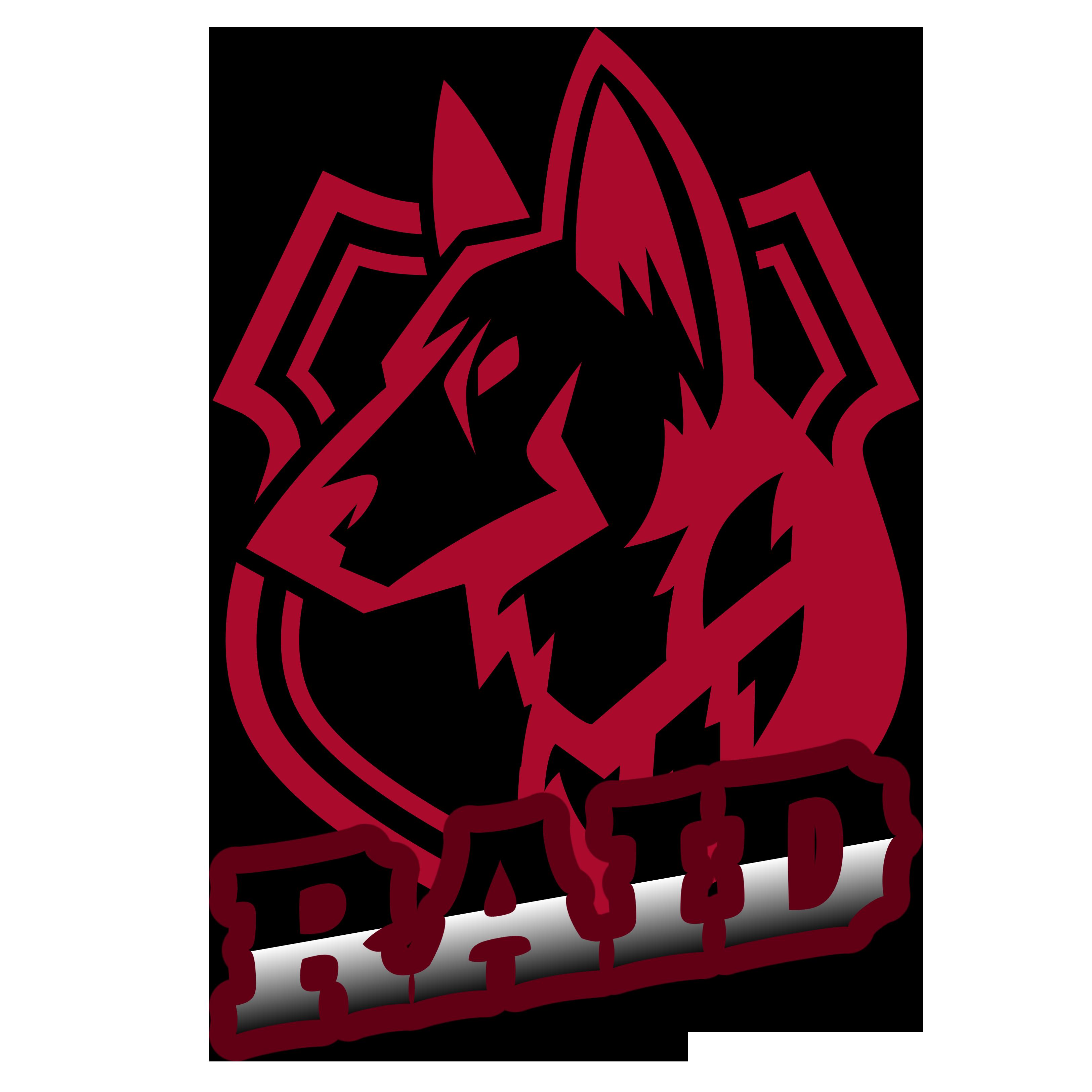 RAID Clan Kumamoto